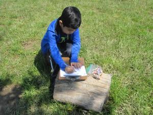 Nature Writing 2